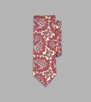 Buff and Red Exploded Paisley Print Silk Tie